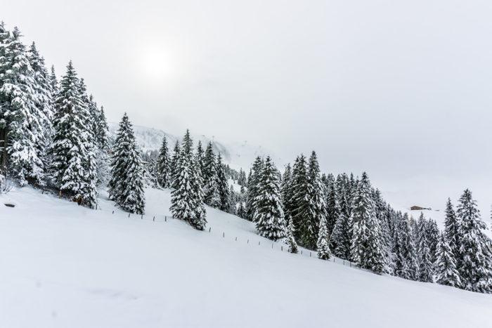 Terrésens_neige